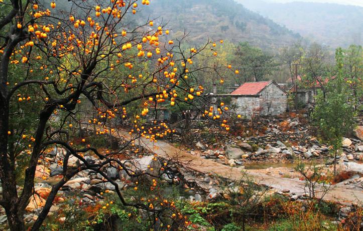 临沂蒙山旅游度假区全要素全产业链推动全域旅游